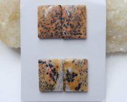 Petrified wood cabochons earrings ,gemstone earrings ,healing stone A865