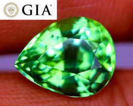 NR! Perfect GIA Certified Unheated Vivid Green Paraíba Tourmaline VVS!