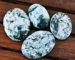 Genuine 155.00 Cts Untreated Oval Shape Tree Agate Cabochon Lot