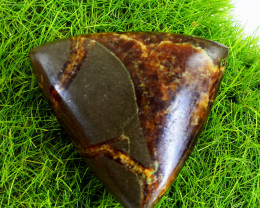 Genuine 45.00 Cts Untreated Pear Shape Septarian Agate Cabochon