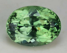 2.56 Cts Green Apatite ~ Awesome Color and Luster ~ Untreated AP32
