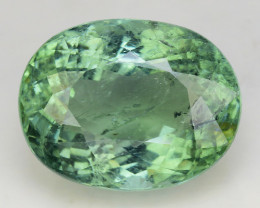 BLACK FRIDAY Certified 12.55 Ct Paraiba Tourmaline Attractive Higher Color
