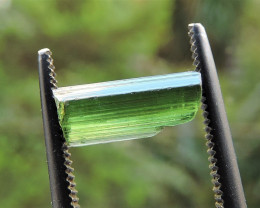 1.60ct FLAWLESS GREEN TOURMALINE ROUGH CRYSTAL FROM TANZANIA