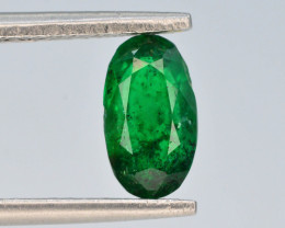 0.95 ct Natural Vivid Green Color Emerald~Swat