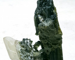 Amazing Tourmaline with Quartz