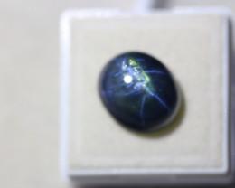 14.24Ct 6 Rays Star Blue Sapphire Lot LZ1737