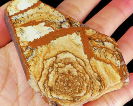 265CT Painting Picture Jasper Dendrite Facet Rough Slab