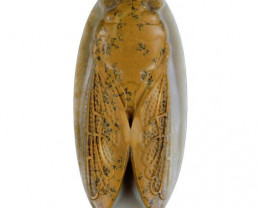 Cicada Carved Cameo Focal Pendant Stone in Ribbon Jasper 135cts