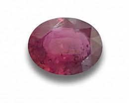 Natural Unheated Ruby |Loose Gemstone| Sri Lanka - New