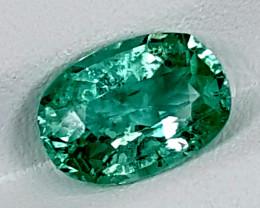 3.30Crt Green Spodumene  Best Grade Gemstones JI146