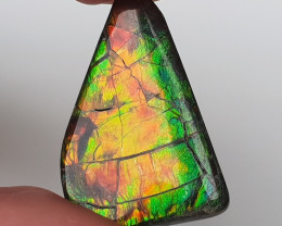 22ct Ammolite - Bright colours and great pattern!