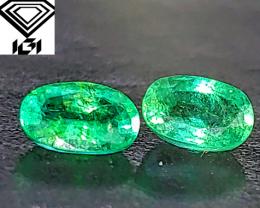 IGI  GLOWING! Vibrant BEAUTIFUL Green Emerald Matched Pair (Zambia) $4,750