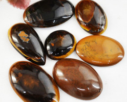 Genuine 215.00 Cts Golden Tiger Eye Gemstone Lot