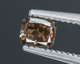 0.29 Crt Diamond Faceted Gemstone (R14)