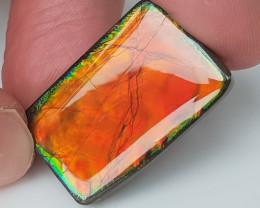 23,90ct Ammolite - Bright Colours!