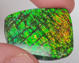 26,78ct Ammolite - Bright Colours & Dragonskin pattern!