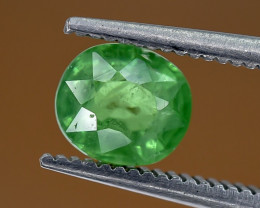 1.06 Crt Tsavorite Garnet Faceted Gemstone (R15)