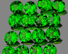 2.50 mm Round 16pcs 1.24cts Chrome Green Diopside [VVS]