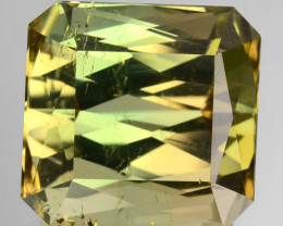 12.08 Cts Natural Bi-Color Tourmaline Octagon Cut Madagascar