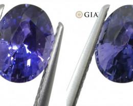 1.63ct Color Change Sapphire Oval GIA Certified Unheated, Sri Lanka, Vivid