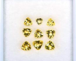 1.55 Cts Natural Yellow Heliodor Beryl 4.5-3.5 mm Trillion 9Pcs Brazil