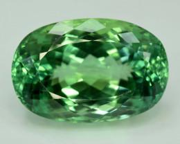 S#31-80 , 61.10 cts Green Spodumene Gemstones
