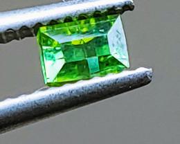 Unheated Green Tourmaline  (Paprok Mine, Afghanistan)