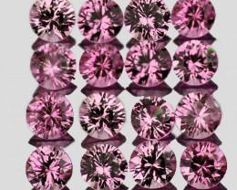 1.30 mm Round 60 pcs Pink Sapphire [VVS]