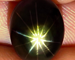 8.25 Carat 12 Ray Star Sapphire - Gorgeous