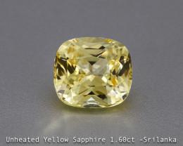 Twinkling Unheated Cute Yellow Sapphire - Cushion 1.60ct - Eye Clean - Sril