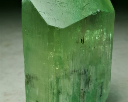 Amazing Hiddenite Kunzite Crystal 550 Cts - Afghanistan