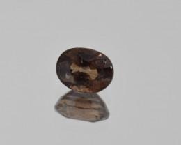 Natural Color Changing Garnet 1.04 Cts Faceted Gemstone