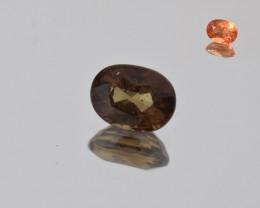 Natural Color Changing Garnet 1.11 Cts Faceted Gemstone