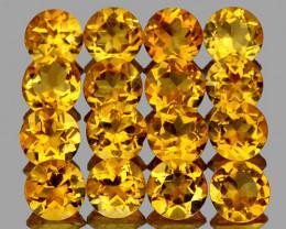 3.50 mm Round 16pcs Golden Yellow Citrine [VVS]
