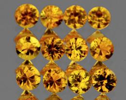 2.50 mm Round 12pcs 1.15cts Yellow Sapphire [VVS]