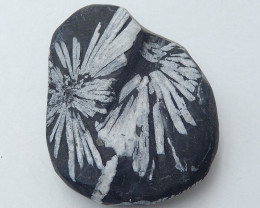 Chrysanthemum stone Gemstone Polished Black Healing Stone H3671