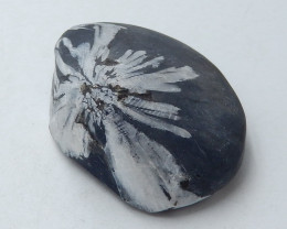 Chrysanthemum stone Gemstone Polished Black Healing Stone H3666