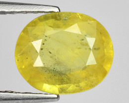 1.24 Ct Yellow Sapphire Top Quality  Luster Gemstone.YS 06