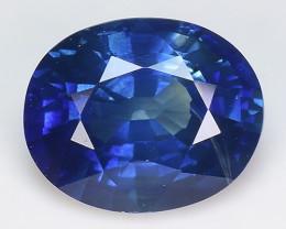 1.55 Cts Magnificent Top Color Sparkling Intense Blue Sapphire SH7