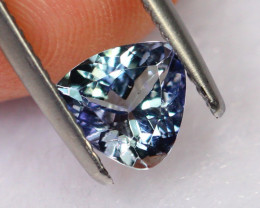 1.01cts Natural Violet Blue Tanzanite / DE309