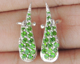 Chrome Tourmaline in Silver Earrings