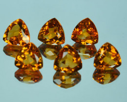 9.64Ct Glittering Natural Citrine Trillion 7.50mm Parcel