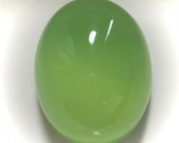 46.20ct Large Glowing Green Botswana Agate No Reserve Auction