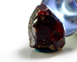 16.90  CT Natural - Unheated Brown Chondrodite Crystal Specimen