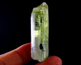 155  CT Natural - Unheated Yellow Green Kunzite Crystal