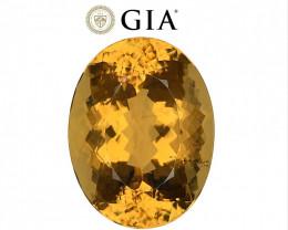24.35 cts GIA Certified Scapolite - VVS - Golden Orange $4500