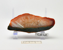 AGATE Polished, Agate Creek, Queensland ,Australia (GR42)