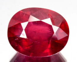 1.45 Cts Pigeon Blood red Ruby Composite Oval Cut Mozambique