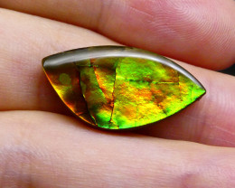 9.23 ct Freeform Tablet Riverbed Pattern Ammolite-$1 No Reserve Auction