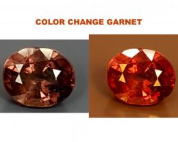 1.50Crt Color Change Garnet Best Grade Gemstones JI14